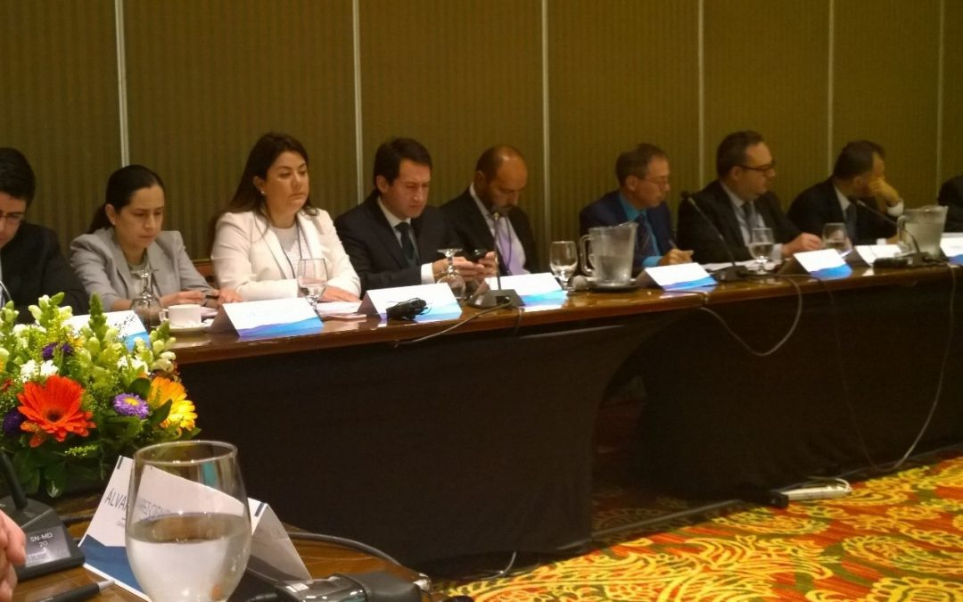 Cefeidas Group's Managing Directors participate in regional corporate governance task force on Company Groups