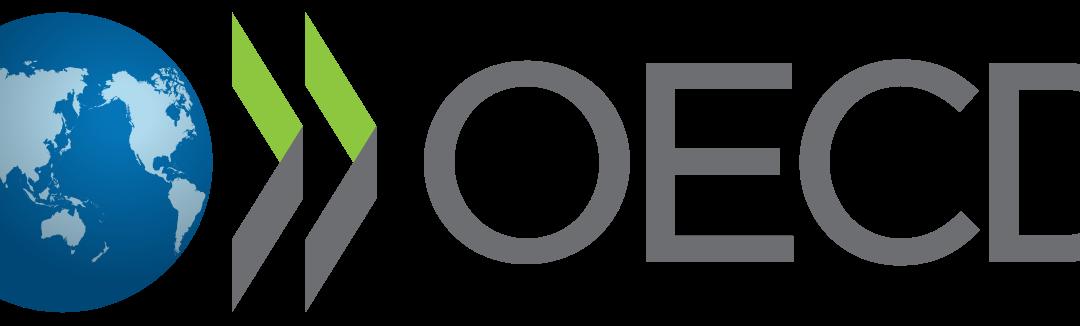 Managing directors of Cefeidas Group facilitate presentation at OECD technical workshop